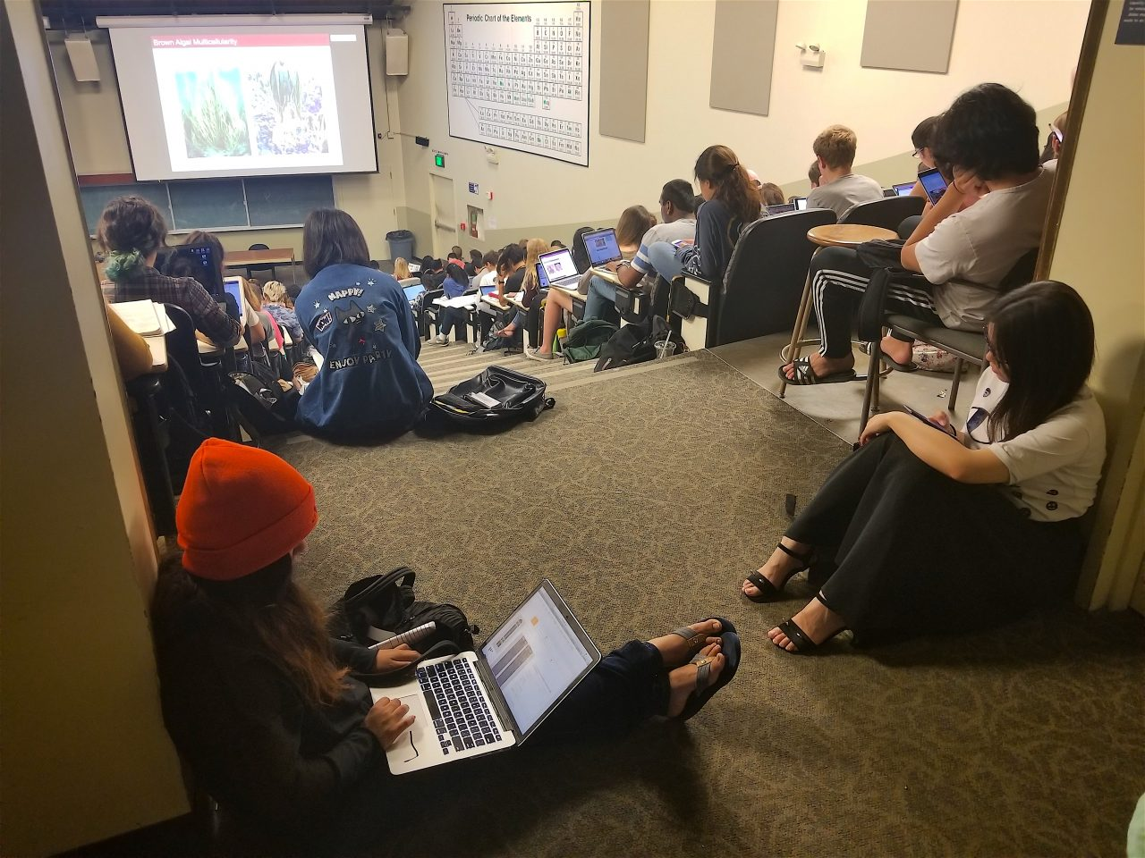 Students at this UC Davis lecture are forced to take tnotes on the floor because there aren't enough seats for all of them. Photo by Felicia Mello for CALmattters