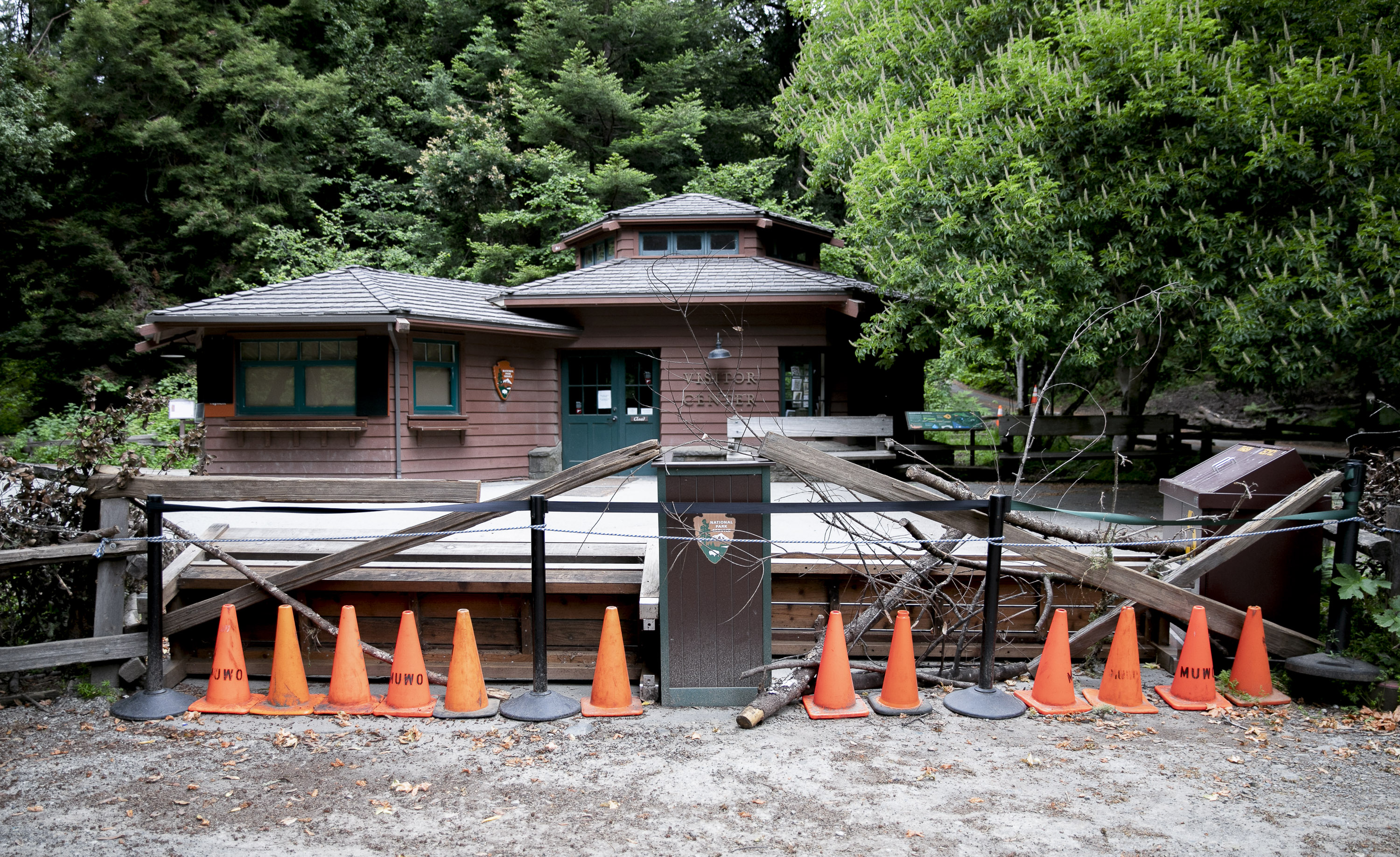 The entrance to Muir Woods National Monument is barricaded closed with a combination of sticks, cones and overturned benches on May 9, 2020. Photo by Anne Wernikoff for CalMatters