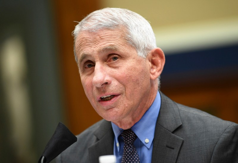 Director of the National Institute of Allergy and Infectious Diseases Dr. Anthony Fauci testifies before a House Committee on Energy and Commerce on the Trump administration's response to the COVID-19 pandemic on Capitol Hill in Washington on Tuesday, June 23, 2020. Photo by Kevin Dietsch, Pool via AP
